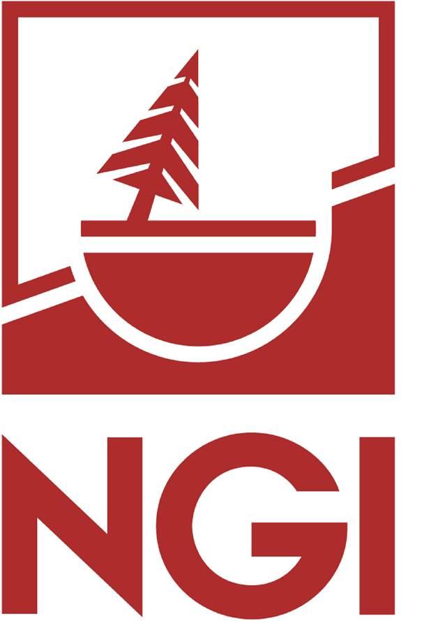 NGI Logo